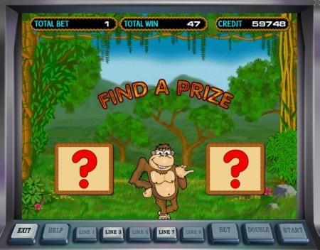 1342699430_crazy-monkey-5